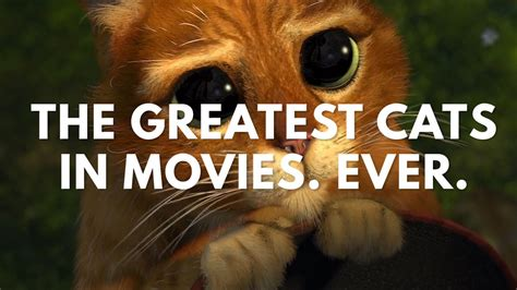 The Greatest Cats In Movies