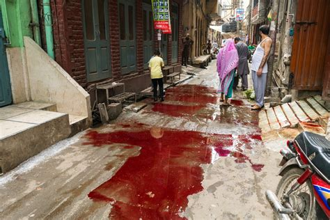 Celebrating Eid al-Adha in Lahore, Pakistan - Lost With