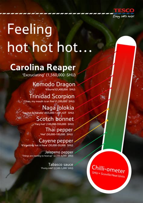 Ouch! The world's hottest chilli pepper is to go on sale