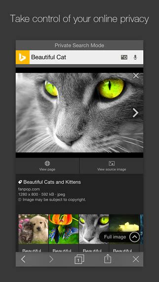 Bing App Gets Private Search Mode, New Image Search, In