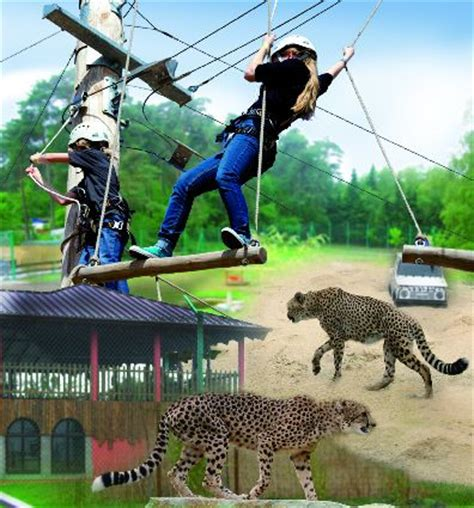 Two New Attractions for Germany's Zoo Safaripark