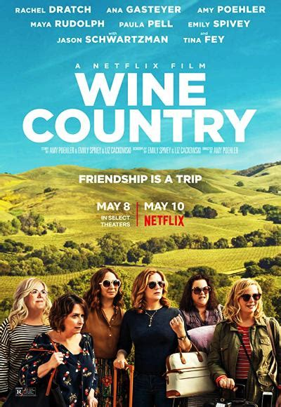 Wine Country (2019) (In Hindi) Full Movie Watch Online