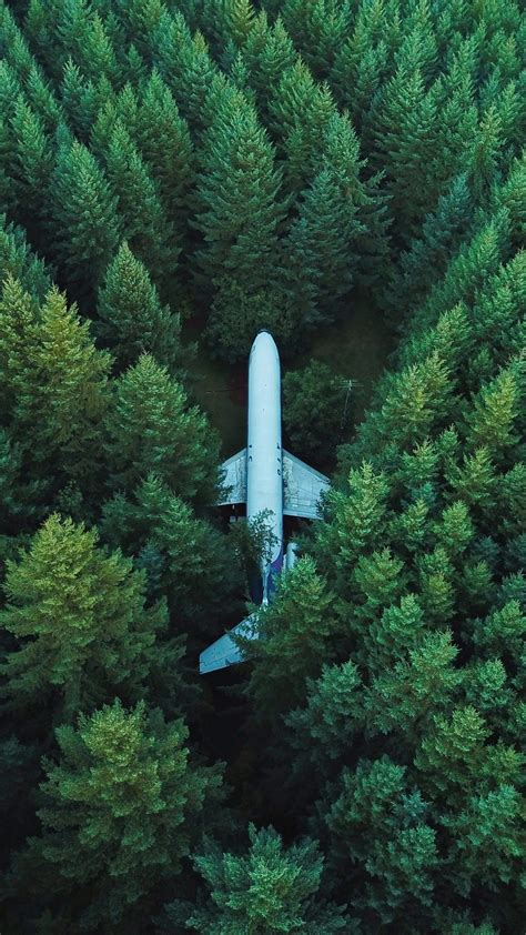 Airplane Trees Top View Wallpaper - [1440x2560]